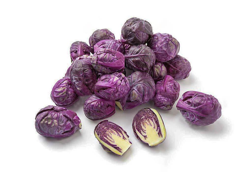 紫のメキャベツ
