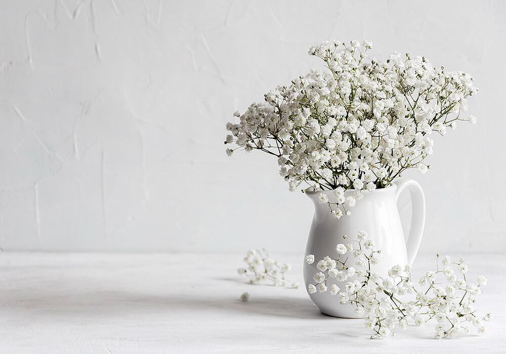 花瓶にカスミソウ
