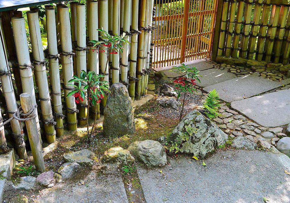 マンリョウの庭木