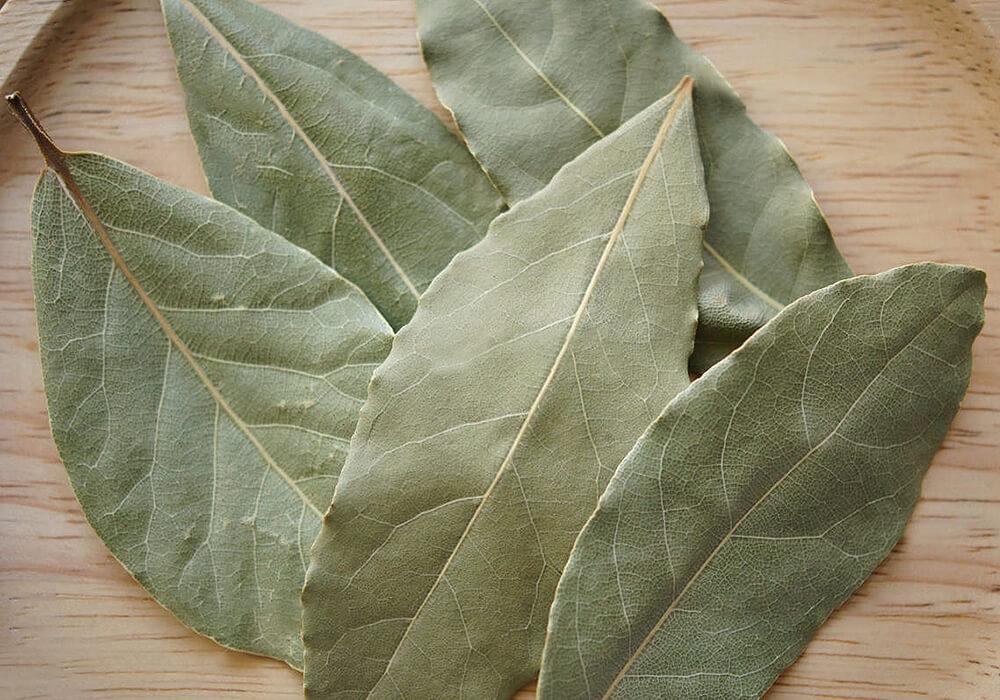 ゲッケイジュの乾燥葉